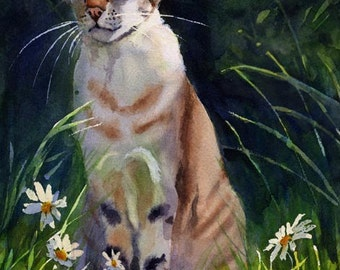 Tiger Tabby Point Oriental Cat Art Print of my watercolor painting