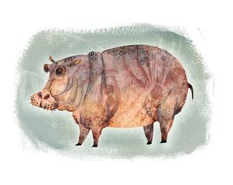Hippopotamus - Animals Series