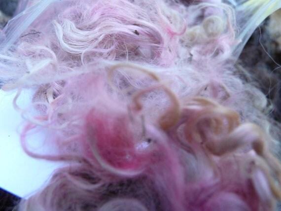 Hand Dyed Mohair Wool Fleece for Fiber Art, 1 oz., Paas Dye (Easter Egg dye) on Mohair from Angora Goat