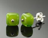 Glass Stud Earrings in Green