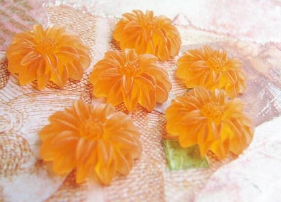 Marigold Orange Daisy Cabochons in Resin (6) b1945