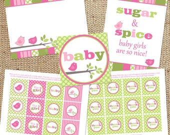 Shabby Bird Girl Baby Shower Printable Decorations - Instant Download - Pink Green Shabby Chic Decor Files - DIY - Signs Tags Toppers Banner