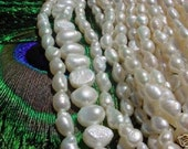 SALE 5 Stands 15 to 16 Inch Freshwater Cultured Pearl Beads White Eggshell Rice Potatoe Baroque In 5 Different Sizes Styles Clearance Lot