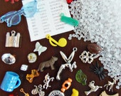 DIY I Spy Bag supplies - 30 trinkets, fabric label, and pellets - Kit T