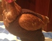Chicken sweater, hen sweater, chickens, hens, sweaters, crochet