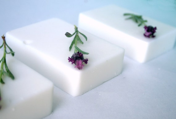 Coconut Milk Bar Soap Bedtime Bath Lavender Scented Vegan