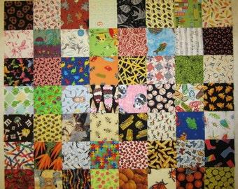 I-Spy Fabric Squares