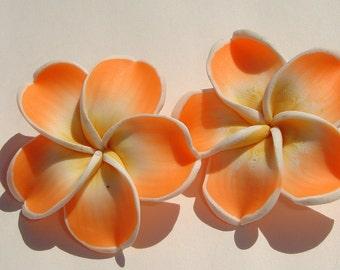 Plumeria Flower Earrings large sweet orange yellow and white polymer clay plumeria hibiscus flower PIERCED post earrings