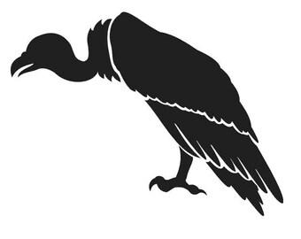 "Vulture - 8"" x 6"""