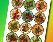 "LeAVES Foliage Leafage 2.5"" Circles for Scrapbooking, Crafts, Decorations -Printable Collage Sheet-JPG Digital File- BuY OnE GeT OnE FREE"