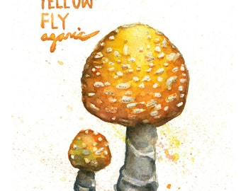Yellow Fly Agaric Mushroom Print (5x6 in)