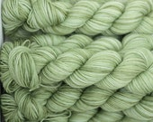 Bowland DK in Fresh Leaves (Lot 060912) - hand dyed superwash bluefaced leicester knitting yarn - UK Seller