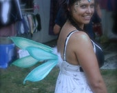 Aqua Dragonfly Wings by Renae Taylor