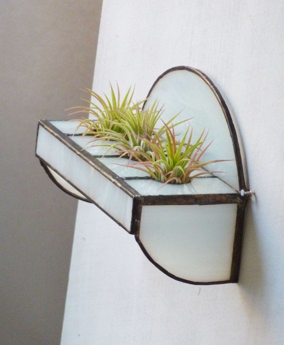 Stained Glass Shelf for Air Plants - Simple White