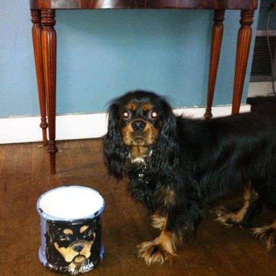 Tattoo Ceramic dog treat Canister COCKER SPANIEL all breeds COOKIE Jar custom any breed large