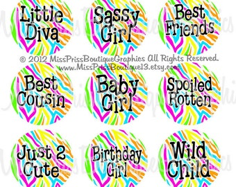 4x6 - COLORFUL ZEBRA SAYINGS - Instand Download- 15 Different Images-  One Inch Bottlecap Graphic Digital Image Collage Sheet -  No.881