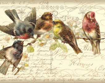 French Birds Collage, Five Birds on a Branch, Instant Download, French Postcard FrA119