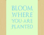 Bloom Where You Are Planted Digital Print White Roses Printable Light Green Sky Blue 5 x 7 Quote Print