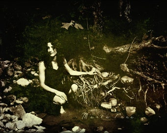 Roots, Photographic Portrait of Woman in Woods, Nature, Tree Roots, Sepia and Green Tones, Merle Pace