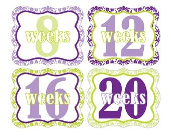 12 Weekly Pregnancy Mama-to-be Maternity Waterproof Glossy Die-cut Stickers  - Monthly stickers available - Design W010-02