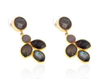 Grey leaves of labrodorite stones Earrings