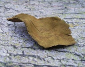 ceramic autumn leaf sculpture by Sarah Knight, 5.25 inches yellow ochre coloration ovate shape