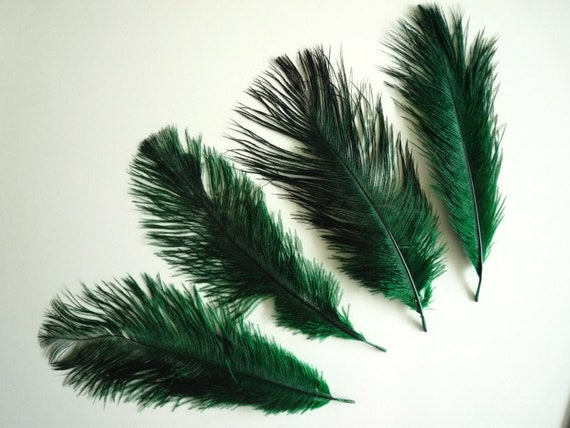 GRAB BAG / Hunter Green  Baby Ostrich Feathers   /  3002