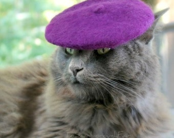 Cat Beret - Wool Felt - Radiant Orchid - Pure Merino Wool - French Beret for Pets