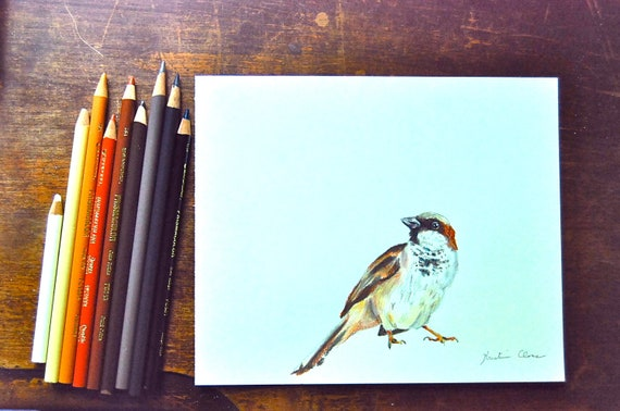 Original Color Pencil Drawing- Small Sparrow