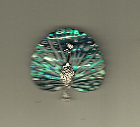 Peacock Pin Bird Paradise Murano Art Glass Silver