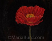 Red Garden Gnome Poppy - Original Oil Painting on Wood 8x8