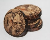 Set of 5 Natural Handmade Spalted Wood Buttons - Large 1 3/4 inch