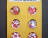 """Glass Magnets - Love My Kitty - Set of 6, 3/4"""" Round"""
