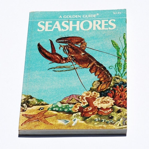vintage illustrated book- seashore plant & animal nature guide for the beach