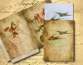 INSTANT DOWNLOAD Sweet Birds 2 Cards and 2 Envelopes ATC Size - DigitalPerfection digital collage sheet 812