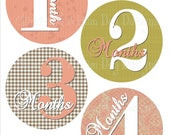 Baby Monthly Stickers- Girls monthly milestone stickers- Baby month stickers- with optional Gerber ONESIE- Baby shower gift- GRL241