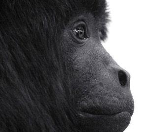 Monkey Profile Photo - 8x10 Black and White Minimalist Animal Photography Print - Simple Mono White Background