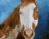Horse Portrait Oil Painting, Paint The Sky Midnight,  Original Oil on Canvas by Cheri Wollenberg