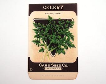Vintage 1920s Unused Paper Seed Packet Celery