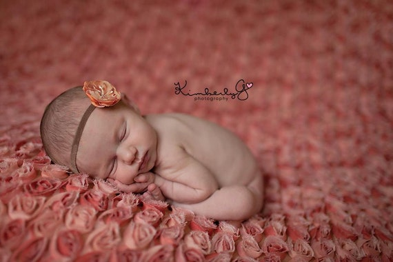 Ashley Flower Headband Photo Prop or Hair Accessory - Perfect for Newborn, Infant,  Baby Photo Sessions