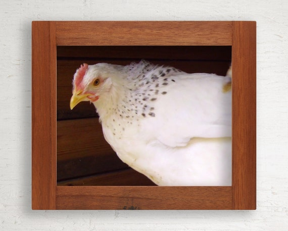 Reclaimed Wood Frame // 8 x 10 // Tropical Hardwood // One of a Kind