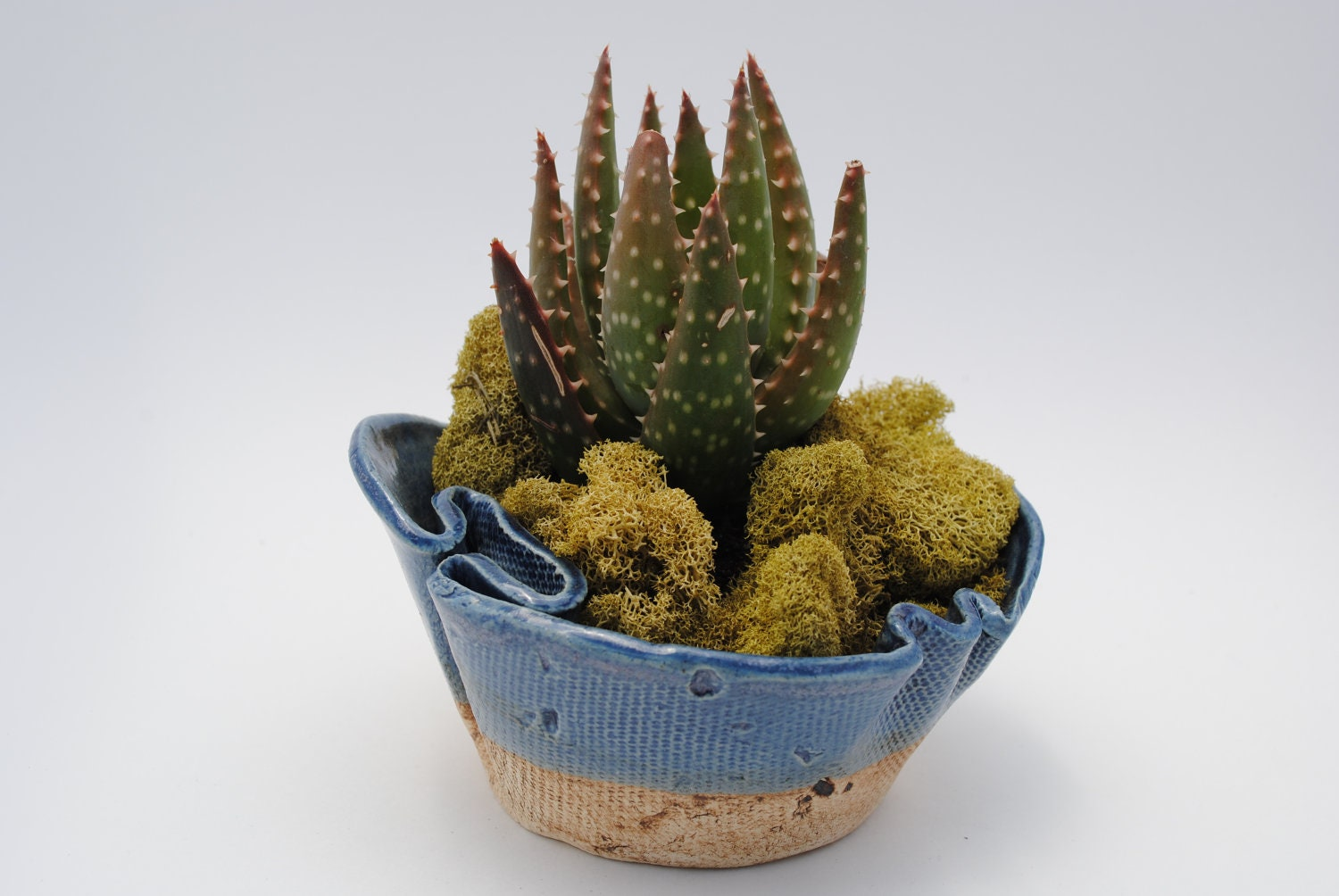 Ceramic Planter Pot Garden Planter Bowl Plant Garden Art