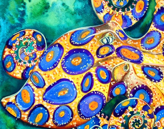 Blue Ringed Octopus Cephalopod Original by snowseychelle ...