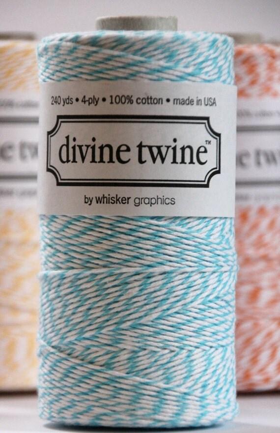 SALE Aqua Divine Twine, 240 Yards