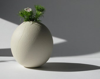 Cracked Egg Vase