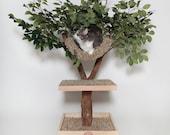 Seedling Cat Tree