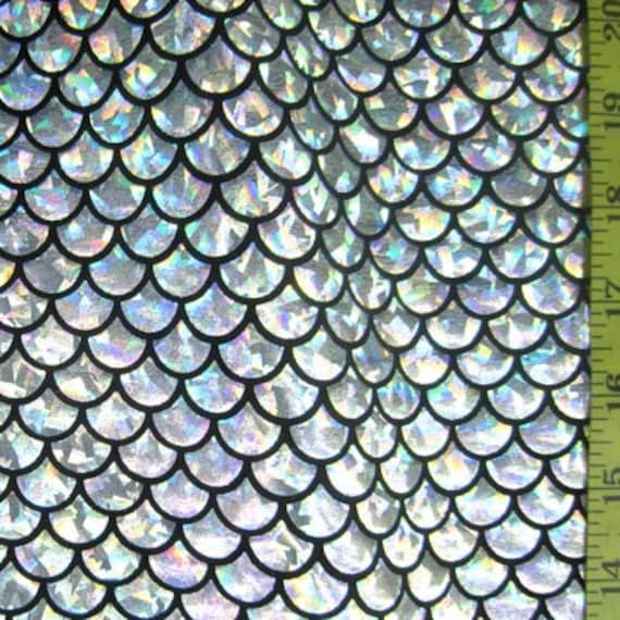 Items Similar To Silver Large Fish Scale On Black Lycra