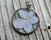 Framed Glass Flower Pendant Pressed Necklace Periwinkle Hydrangea Sterling Silver Chain Nature Inspired Botanical Jewelry