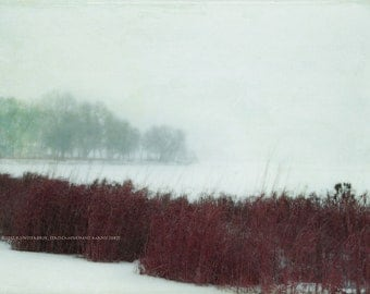 WINTER SCAPE Abstract Original Art Color Photograph