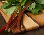 Rhubarb Seeds - Naturally Grown Untreated Seed for your Edible Organic Garden